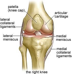 Knee injury specialists in barnstaple north devon bideford knee pain treatment barnstaple devon ccuart Gallery
